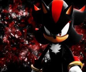Puzzle Shadow est un hérisson comme Sonic, et son rival