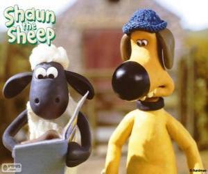 Puzzle Shaun et Bitzer