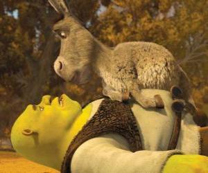 Puzzle Shrek et l'âne, à regarder