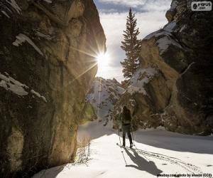 Puzzle Ski de montagne