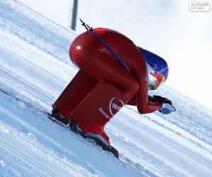 Puzzle Ski de vitesse