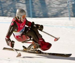 Puzzle Skieuse paralympique dans la compétition de slalom