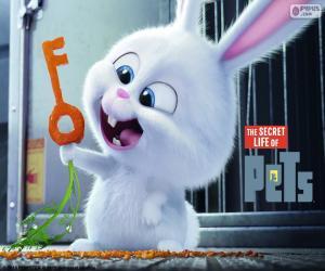 Puzzle Snowball, un lapin blanc