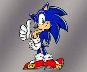 Puzzle Sonic le hérisson, le principal protagoniste du jeu vidéo Sonic de Sega