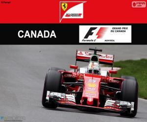 Puzzle S.Vettel, G.P. Canada 2016