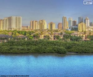 Puzzle Tampa, États-Unis d'Amérique