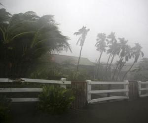 Puzzle Tempête tropicale