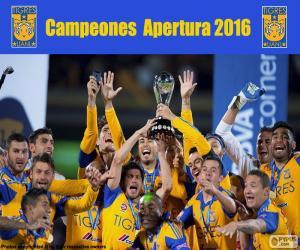 Puzzle Tigres UANL, Apertura 2016