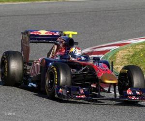 Puzzle Toro Rosso STR6 - 2011 -