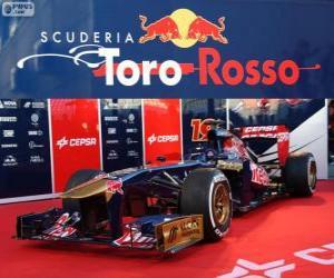 Puzzle Toro Rosso STR8 - 2013 -