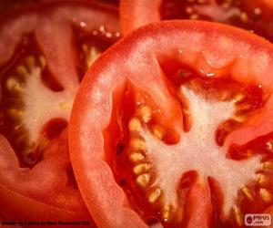 Puzzle Tranches de tomate