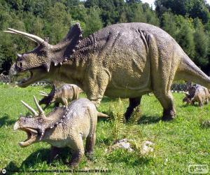 Puzzle Triceratops