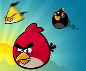 Puzzle Trois de ces oiseaux de Angry Birds