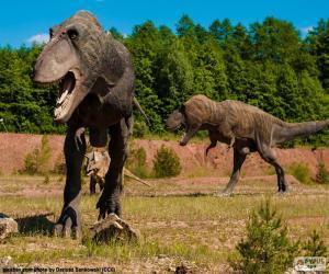 Puzzle Trois dinosaures