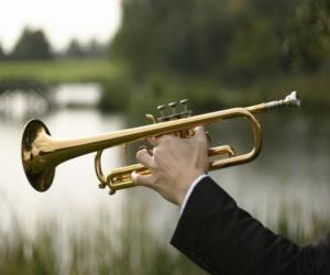 Puzzle Trompette, instrument de musique à vent