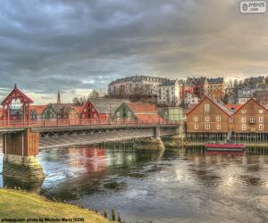 Puzzle Trondheim, Norvège