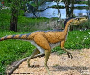 Puzzle Troodon