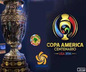 Puzzle Trophée Copa America 2016