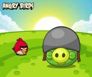 Puzzle Un petit oiseau rouge à côté d'un cochon avec un casque