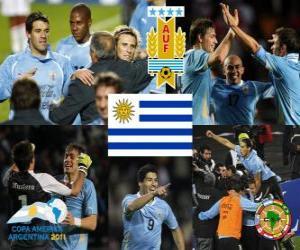 Puzzle URU finalist, Copa America 2011