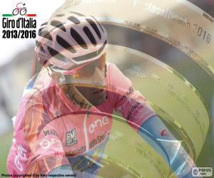 Puzzle V. Nibali, Giro d'Italie 2016