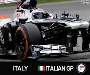 Puzzle Valtteri Bottas - Williams - Monza, 2013