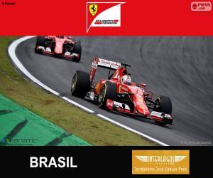 Puzzle Vettel, G.P du Brésil 2015