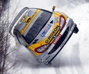 Puzzle Voiture de rallye sur la neige