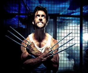 Puzzle Wolverine ou Le Glouton est un super-héros mutant et l'un des X-Men et des New Avengers