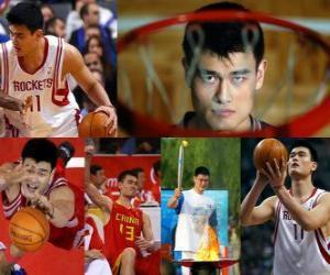 Puzzle Yao Ming se retire de basket-ball professionnel (2011)