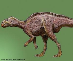 Puzzle Zalmoxes vivait il y a 65 millions années