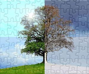 Puzzles de Fêtes et Saisons