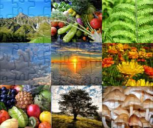 Puzzles de Nature