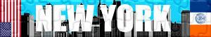 Puzzles de New York
